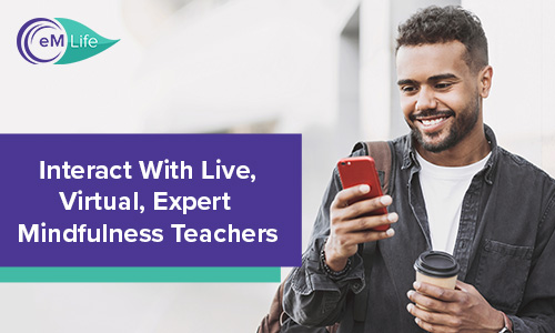 interact with live, virtual, expert mindfulness teachers